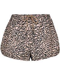 The Upside Efrem Leopard-print Track Shorts - Multicolour