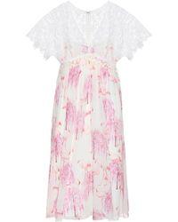 Giamba Printed Silk And Lace Dress - Pink
