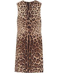 Dolce & Gabbana Leopard-print Silk-cady Minidress - Multicolor
