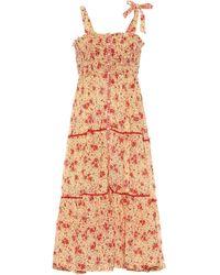 Poupette Triny Floral Cotton Midi Dress - Multicolour