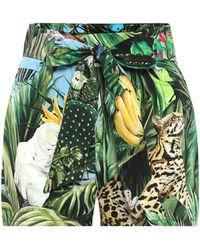 Dolce & Gabbana Bedruckte Shorts aus Baumwoll-Twill - Grün