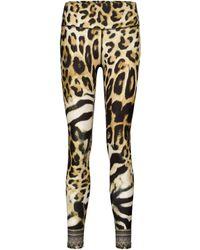 Camilla Leopard-print leggings - Multicolor