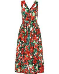 Dolce & Gabbana Vestido midi de algodón floral - Rojo
