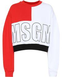 MSGM Logo Printed Cotton Sweatshirt - Red