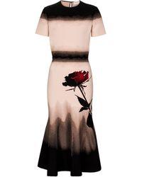 Alexander McQueen Printed Stretch-knit Midi Dress - Pink