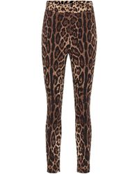 Dolce & Gabbana Bedruckte Leggings - Mehrfarbig
