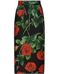 Dolce & Gabbana Floral High-rise Crêpe Midi Skirt - Black
