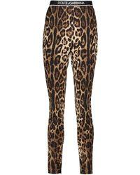 Dolce & Gabbana Bedruckte Leggings aus Seide - Mehrfarbig