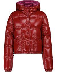 Moncler Chaqueta de plumas Bardanette cropped - Rojo
