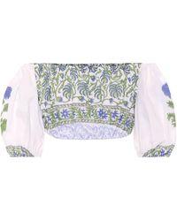 Juliet Dunn Off-the-shoulder Cotton Crop Top - White