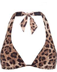 Dolce & Gabbana Leopard-Print Padded Triangle Bikini Top - Multicolor