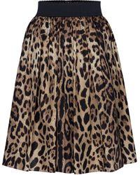 Dolce & Gabbana Jupe en coton à motif léopard - Marron