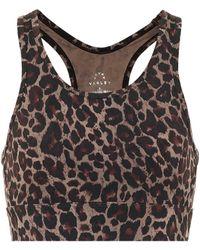 Varley Berkeley Leopard-print Sports Bra - Brown