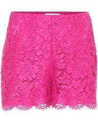 Valentino Shorts aus Spitze - Pink