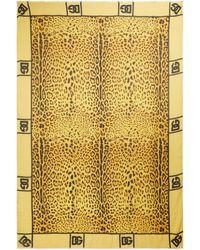 Dolce & Gabbana Schal Leopard aus Modal und Kaschmir - Gelb