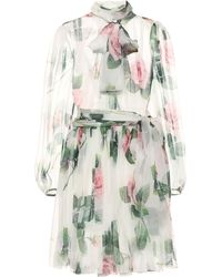 Dolce & Gabbana Floral Silk-chiffon Dress - Multicolor