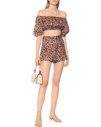 Juliet Dunn Leopard-print Cotton Crop Top - Multicolour