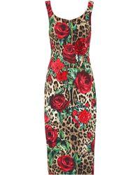 Dolce & Gabbana Embellished Printed Midi Dress - Red