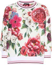 Dolce & Gabbana - Floral-printed Cotton Jumper - Lyst