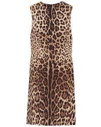 Dolce & Gabbana Miniabito leopardato in cady di seta - Multicolore