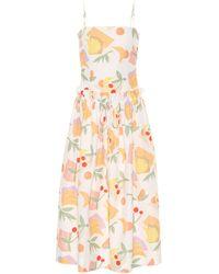 Rejina Pyo Leah Printed Cotton-blend Dress - Multicolour