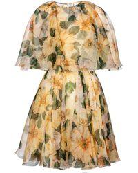 Dolce & Gabbana Minikleid aus Seidenorganza - Gelb