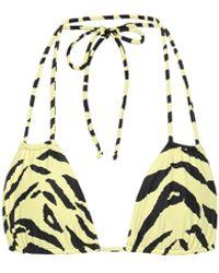 Saint Laurent Zebra-print Bikini Top - Multicolor