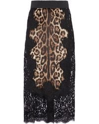 Dolce & Gabbana Midirock aus Satin mit Leo-Print - Mehrfarbig
