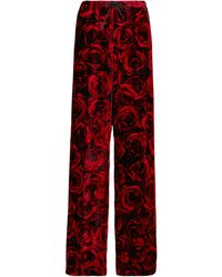 Dries Van Noten Bedruckte Hose aus Samt - Rot