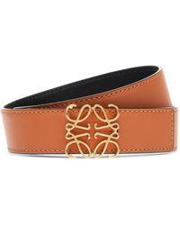 Loewe Reversible Belt - Brown