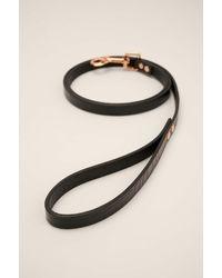NA-KD Basic Leather Dog Leash - Zwart