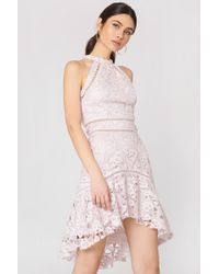 True Decadence - Detailed Lace Dress Pale Lilac - Lyst