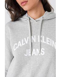 Calvin Klein Curved Logo Crop Hoodie - Grijs