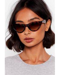 Nasty Gal You Tort Wrong Cat-eye Sunglasses - Brown
