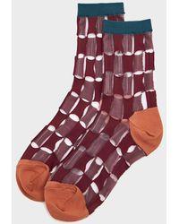 Hansel From Basel Women's Petite Chucks Sheer Crew Socks - Red