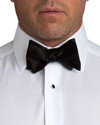 David Donahue Men's Satin Self-tie Bow Tie - Black