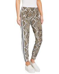 Norma Kamali Python-print Side Stripe Jogger Pants - Multicolour