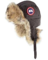 Canada Goose Coyote-fur Aviator Hat - Gray