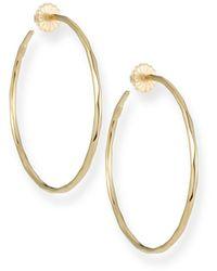 Ippolita Thin Glamazon Hoop Earrings, Medium - Metallic