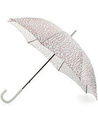 HUNTER - Original Printed Walker Bubble Umbrella - Lyst