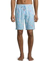 20c1f0b6a1 Lyst - Ferragamo Fish Swim Shorts in Green for Men