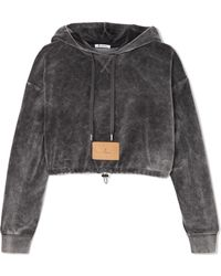 T By Alexander Wang - Cropped Cotton-blend Velour Hooded Top - Lyst