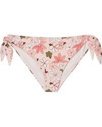 Broochini - Indah Floral-print Bikini Briefs - Lyst