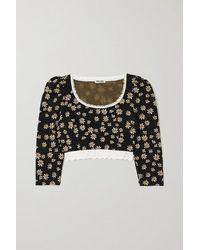 Miu Miu Cropped Lace-trimmed Floral Jacquard-knit Top - Black