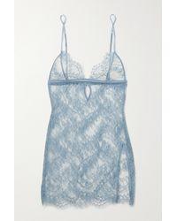 Coco De Mer Lucida Nachthemd Aus Stretch-spitze Mit Satinbesätzen - Blau