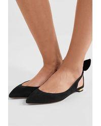 Aquazzura Deneuve Bow-embellished Suede Point-toe Flats - Black