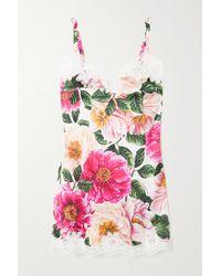 Dolce & Gabbana Lace-trimmed Floral-print Silk-satin Chemise - Multicolour
