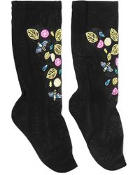 Falke Embroidered Stretch-tulle Socks