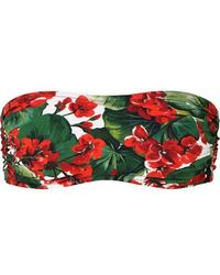 Dolce & Gabbana Portofino Bandeau-bikini-oberteil Mit Blumenprint - Rot