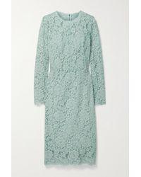 Dolce & Gabbana Midikleid Aus Schnurgebundener Spitze Aus Einer Baumwollmischung - Blau